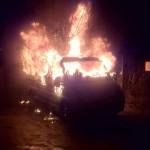 Auto von AfD-Politiker ausgebrannt