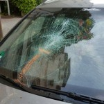 Scheiben bei Naziautos zerstört