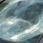 Autos von AfD-Funktionären beschädigt