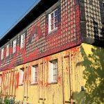 Farbe gegen Haus von Jörg Urban (AfD) und Bauschaum bei Blaue Narzisse-Büro