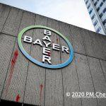 Farbbeutel gegen Bayer-Niederlassung