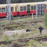 Kabelbrand an Bahnstrecke