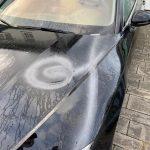 Haus und Auto einer AfD-Kandidatin angesprüht